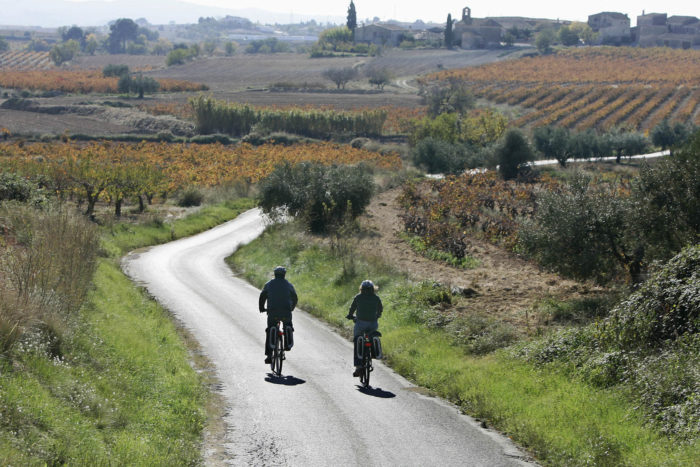 cycling penedes wine region in Spain
